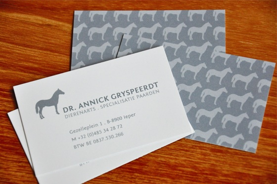 Veterinary surgeon business card