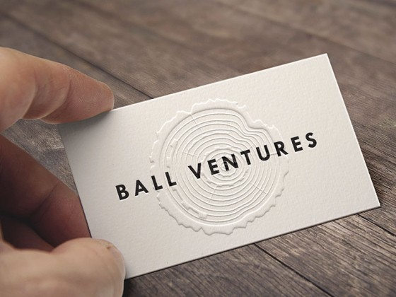 Ball Ventures business card