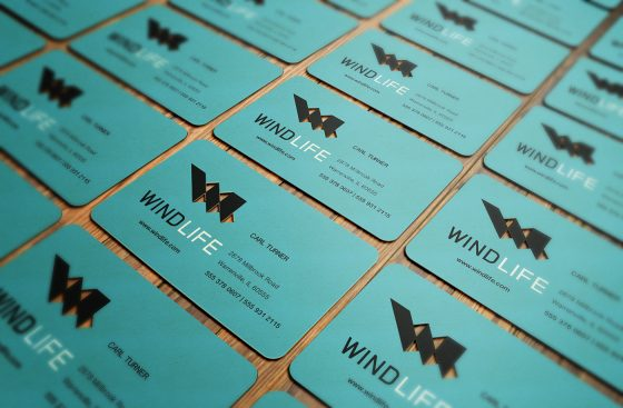 Wind Life business cards